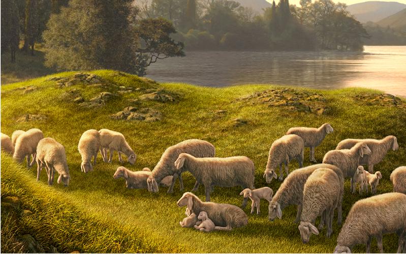 S'aimer, se servir et faire du service pastoral les uns auprès des autres