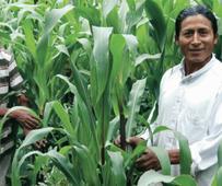 Bourse Ezra Taft Benson pour l'étude de l'agriculture et de l'alimentation