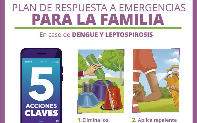 Image dengue y leptospirosis