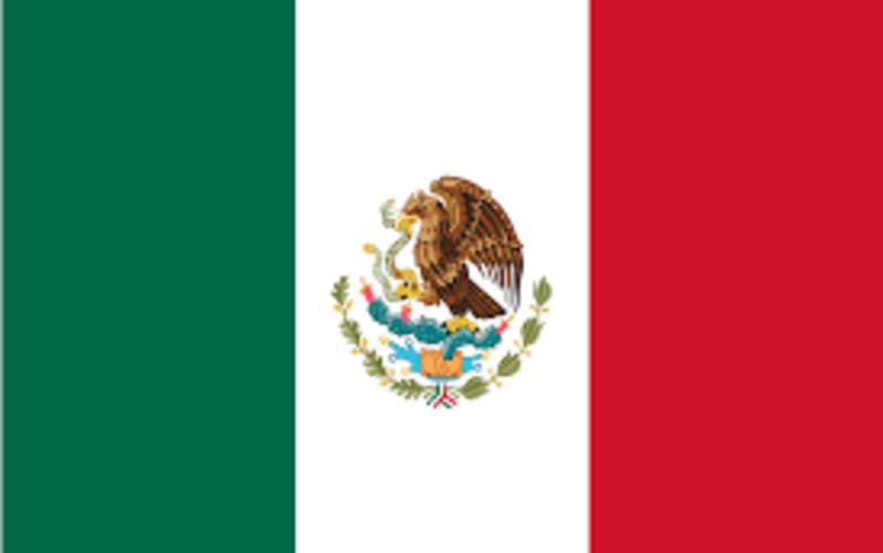 Llamados a servir México