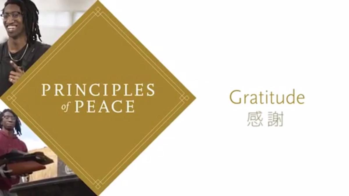 #平和の君(2017)「感謝」篇
