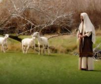 地域会長会メッセージ2020:預言者に従う・啓示を受ける