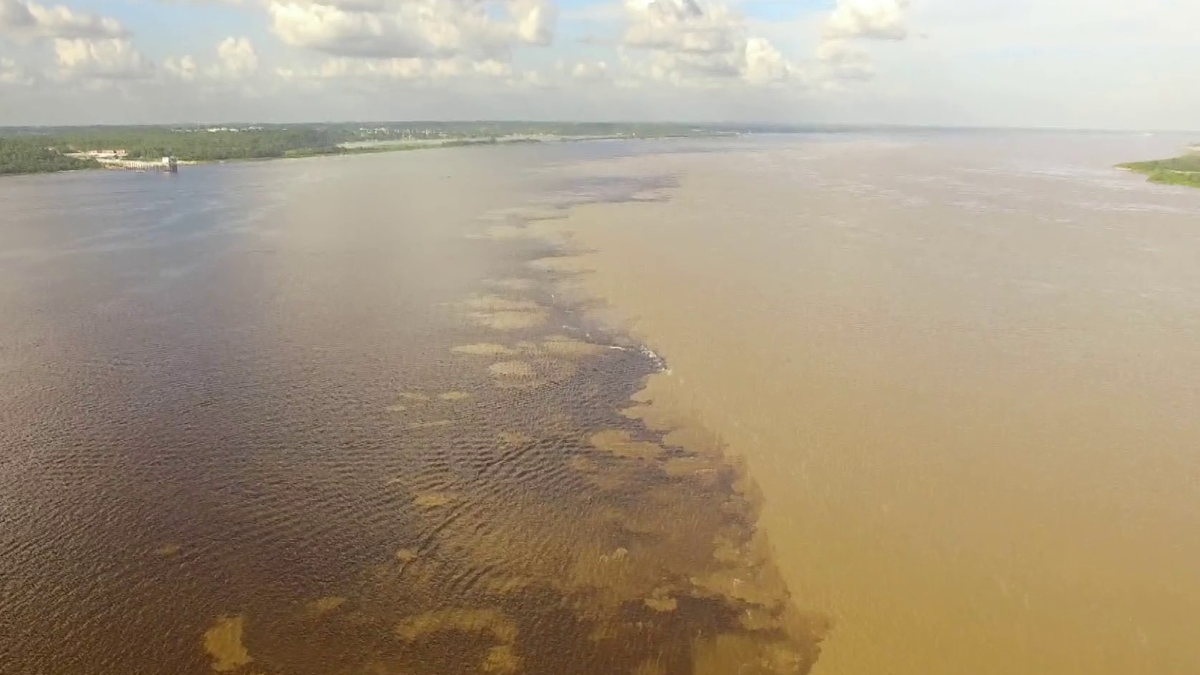 foto del rio amazonas