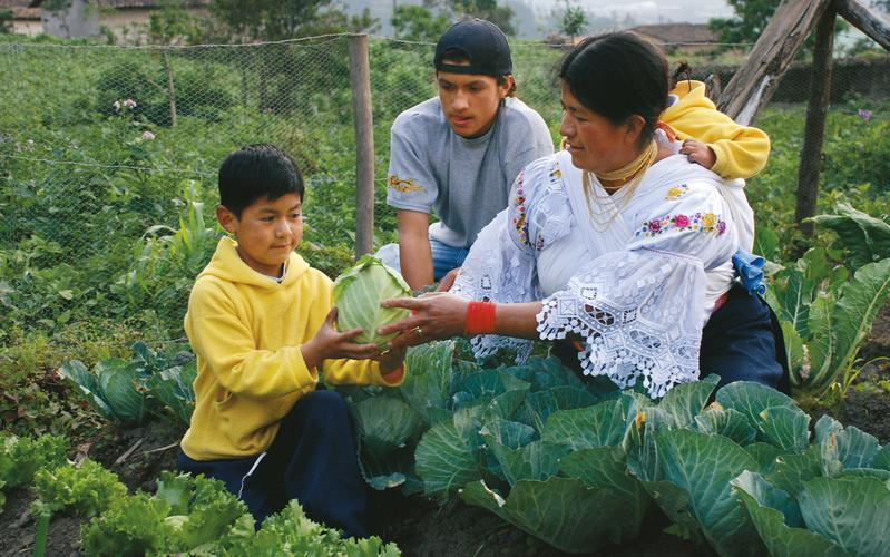 Imagen recursos de alimentos y productos basico