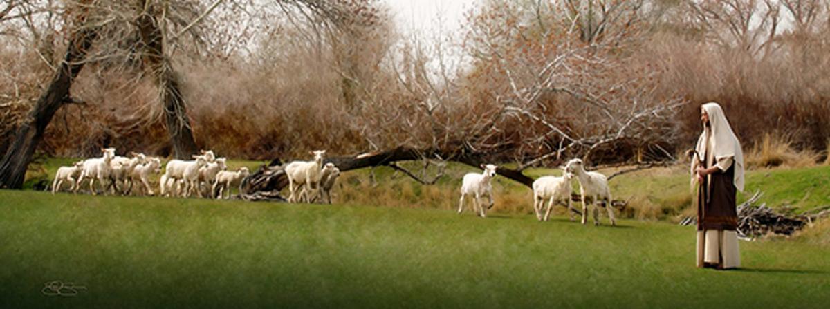 El pastor con sus ovejas
