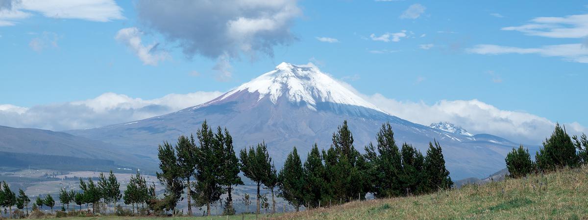 Imagen para recursos de educación y empleo ecuador