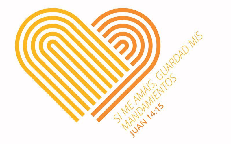 Logo de FSY