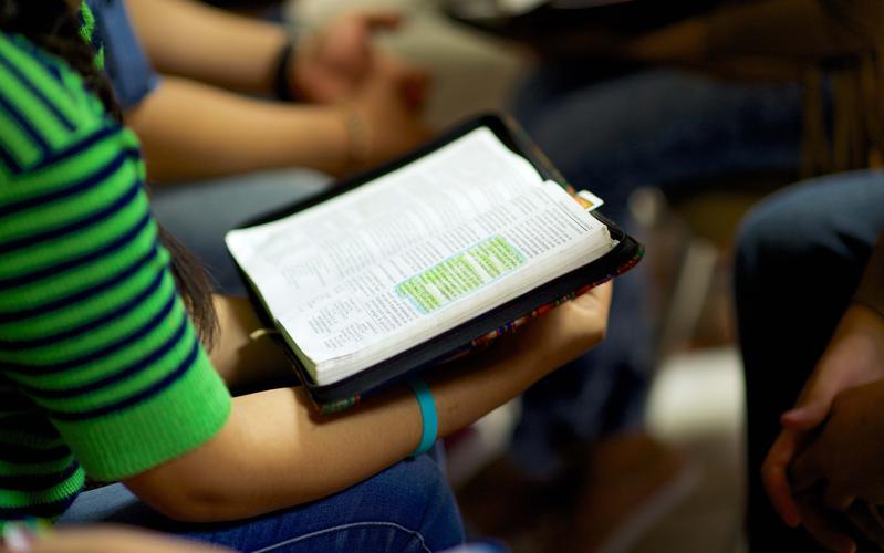Jóven leyendo las escrituras