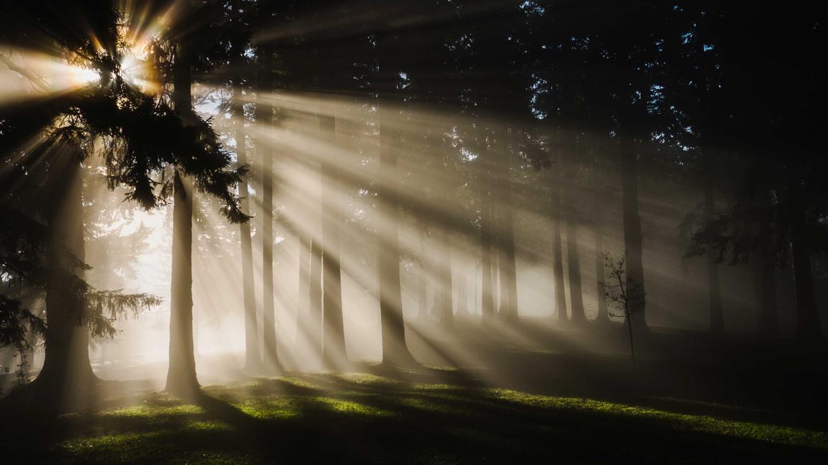 A Restauração da Plenitude do Evangelho de Jesus Cristo – Uma proclamação bicentenária ao mundo