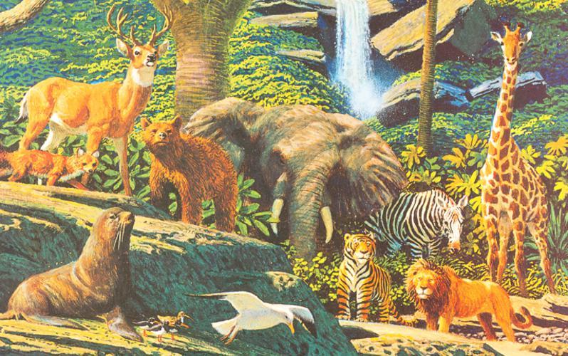 100: Сотворение живых существ