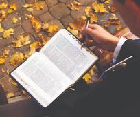 Cập Nhật về Ảnh Hưởng của Virus Corona đối với Những Người Truyền Giáo Thánh Hữu Ngày Sau và Các Tín Hữu