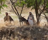 Mary and Joseph journey to Bethlehem.jpg