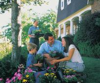 father-children-planting-flowers-140985-print.jpg