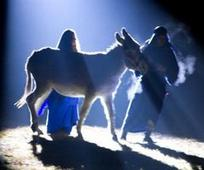 Nativity Banner Photo.jpg