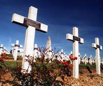 Remembrance Day.Cemetery Crosses.jpg