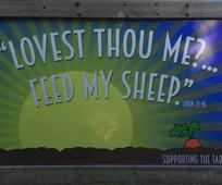 Lovest thou me? … Feed my sheep