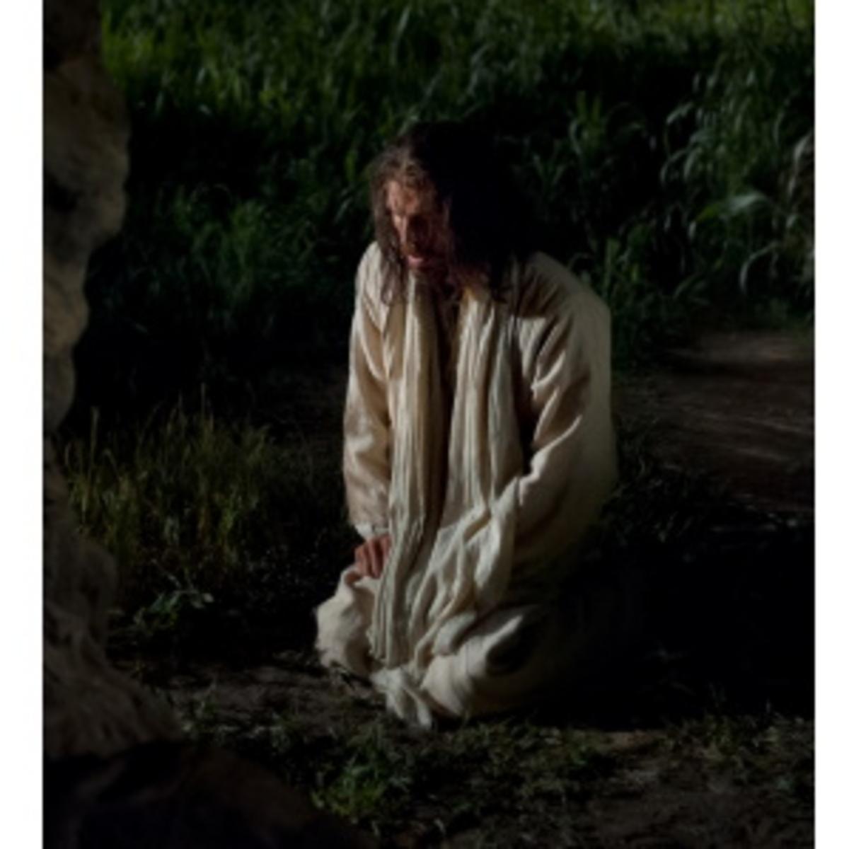 Jesus' agony in garden