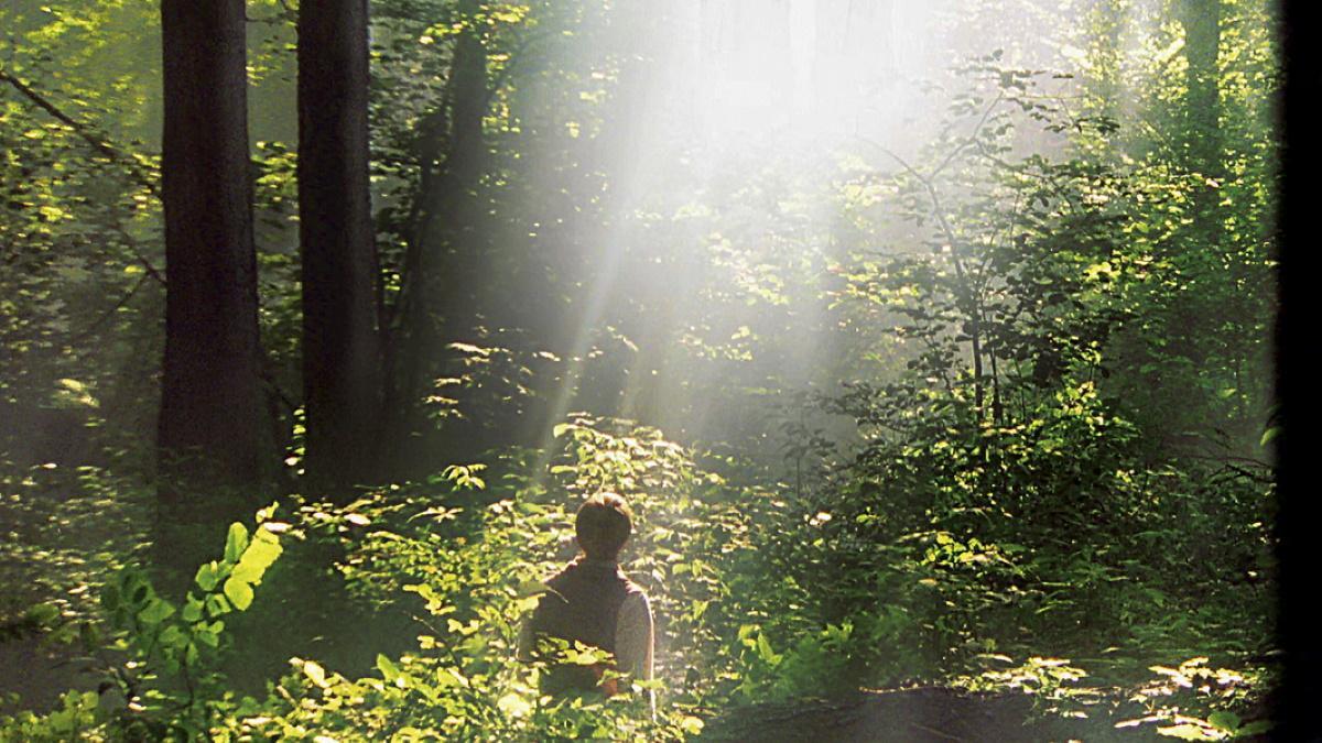 Joseph in Sacred Grove