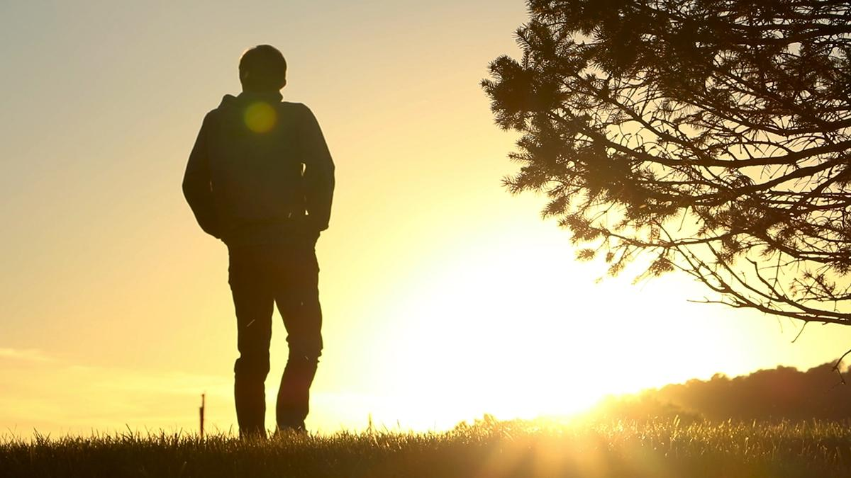 Man pondering while walking in a field at sunset