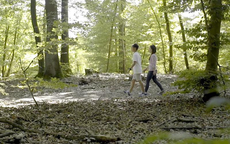 Duas pessoas a caminhar pela floresta