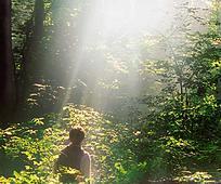 Život Josepha Smitha: Prvo viđenje