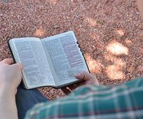 reading in the holy scriptures