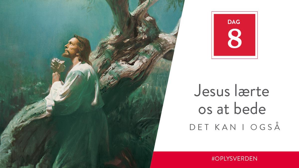 Dag 8 - Jesus underviste andre, det kan I også