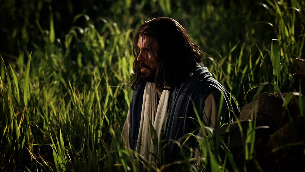Jesus Christ kneeling in the Garden of Gethsemane.