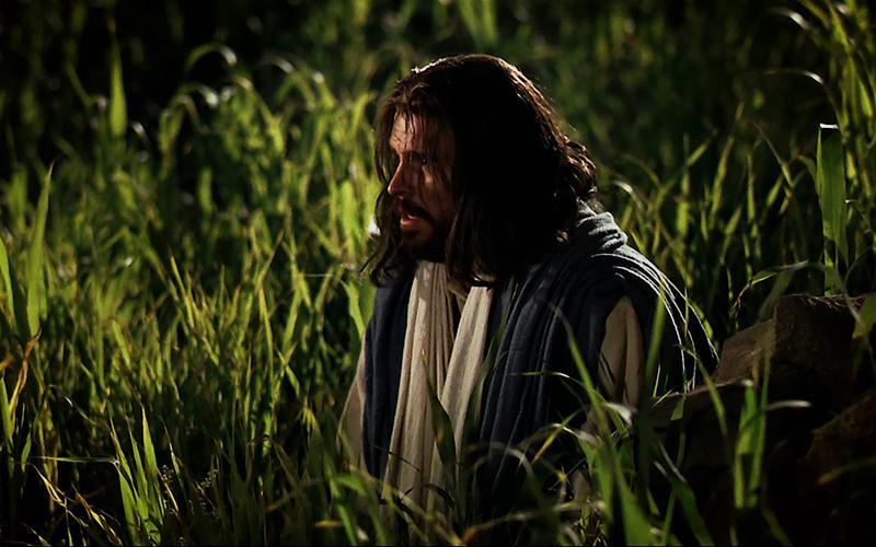 Jesus Christ kneeling in the Garden of Gethsemane.