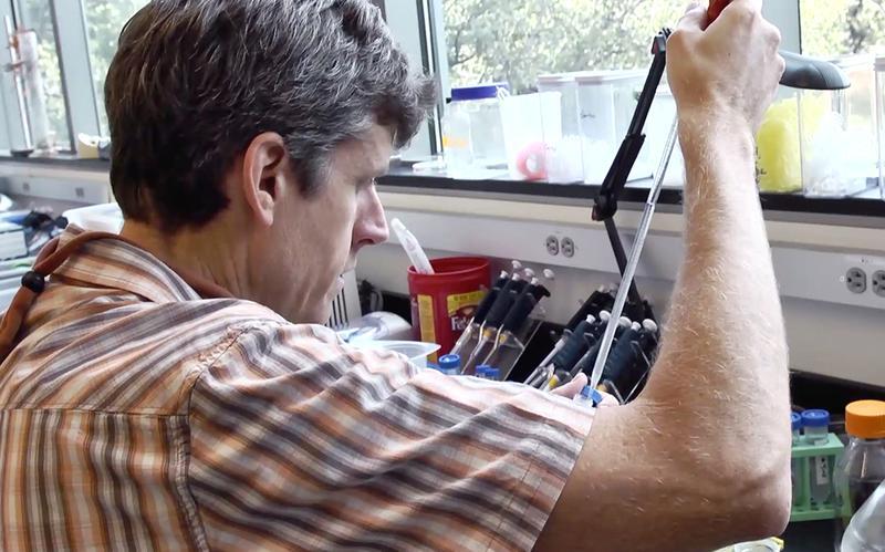 Ein Wissenschaftler führt an seinem Arbeitsplatz Experimente durch