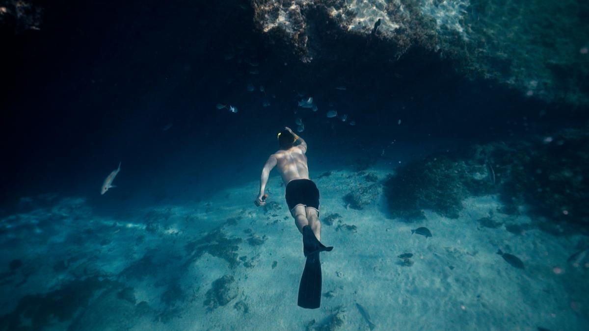 A man scuba dives and looks at the sea life.