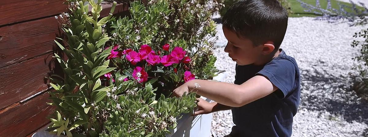Chłopiec zajmuje się kwiatami.