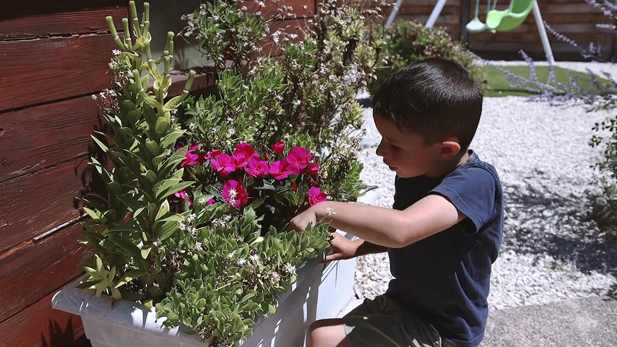 Дечак се нагиње ка цвећу.