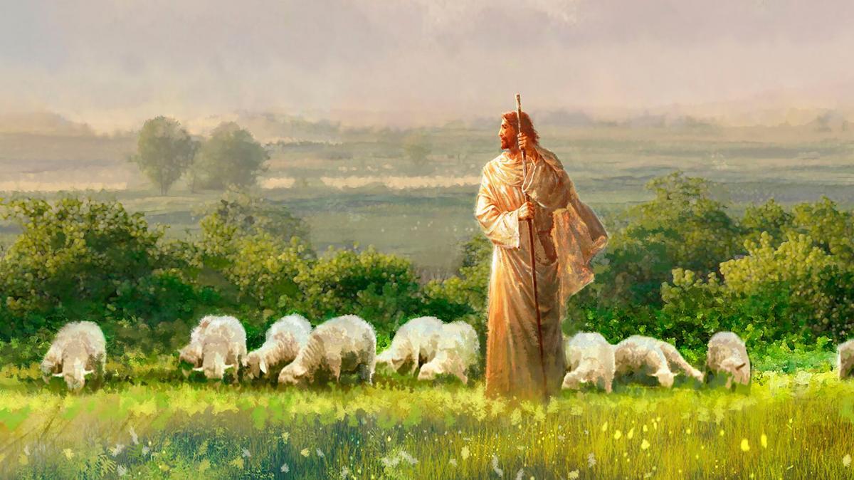 Krishti si bari