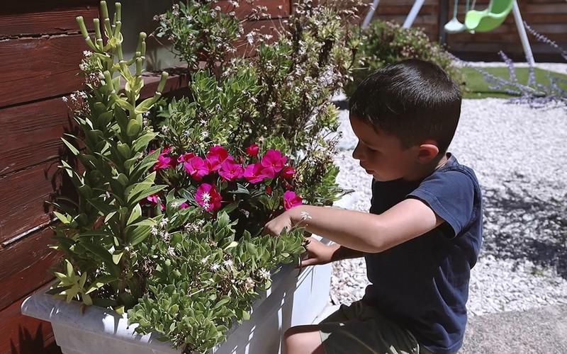 Dječak se brine o cvijeću.