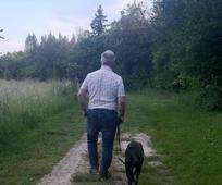 Spazieren mit Hund, Begegnungen unterwegs