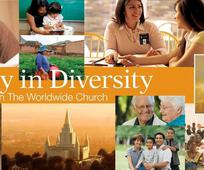 Jednota v rozmanitosti