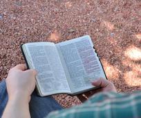 Wie man in geistiger Hinsicht eigenständiger wird