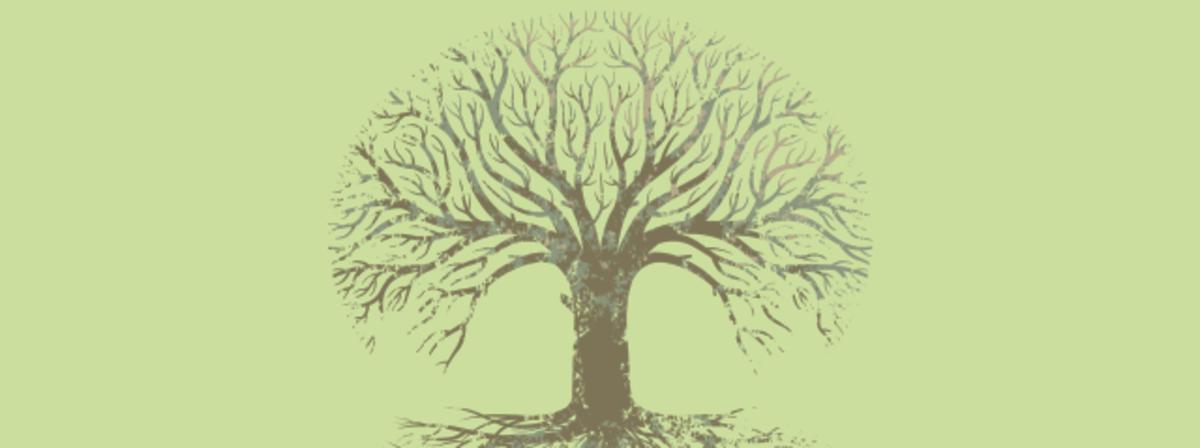 tree_grunge_roots