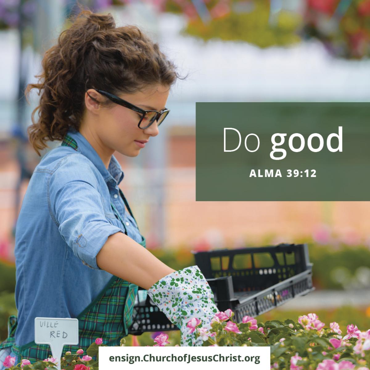 Meme Alma 39:12