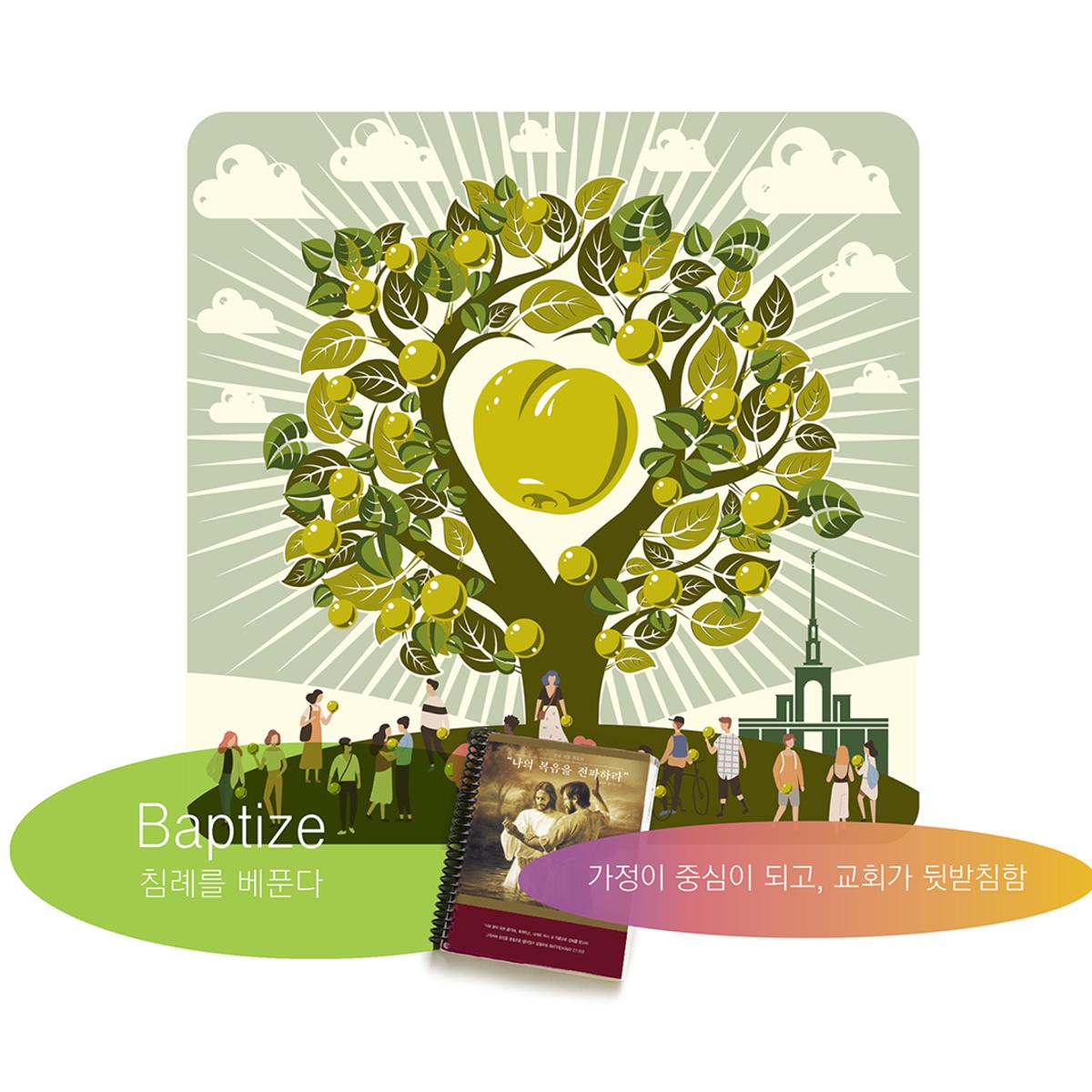 생명나무의 열매 일러스트