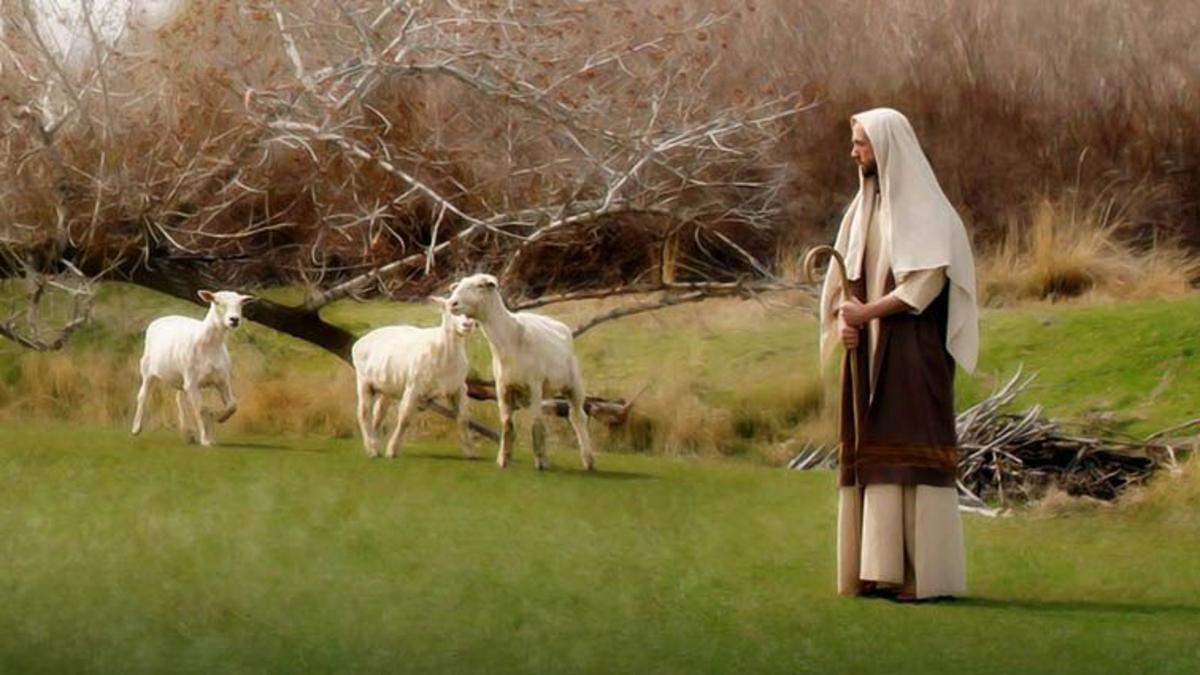 양과 예수 그리스도