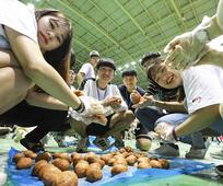 봉사활동을 하고 있는 청소년들의 모습