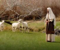 양과 잃어버린 예수 그리스도