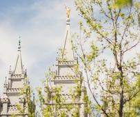Soltleikas templis