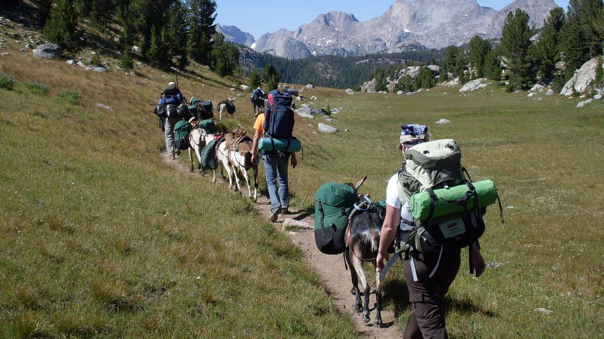 Kalnai ir keliautojai
