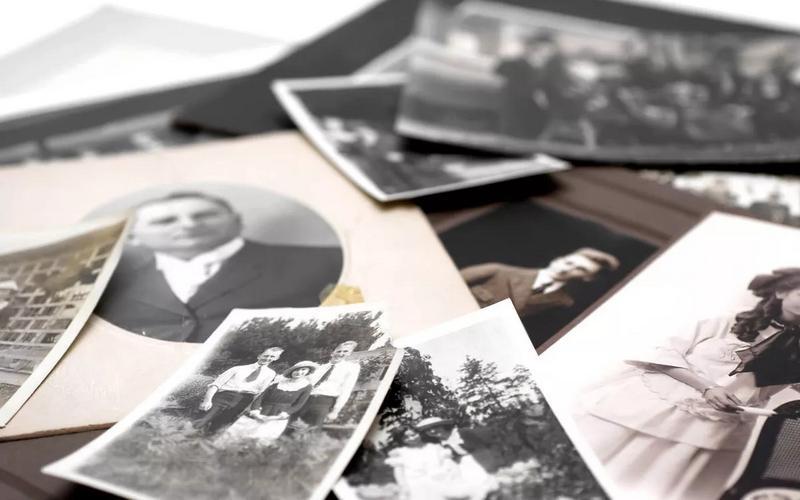genealogija