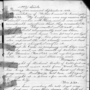 A page from George F. Richards's journal containing accounts of his work and business transactions. The 1 November 1882 entry relates his purchase of horses. (Church History Library, Salt Lake City.)