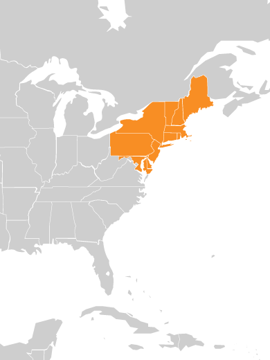 Eastern States