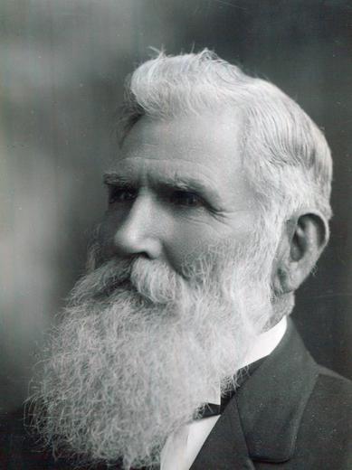 <p> ca. 1884</p>